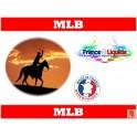 e-liquide arome MLB (FEL M)